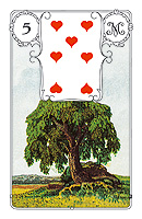 Lenormand card, card number 5, tree